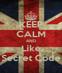 KEEP CALM AND Like Secret Code - Personalised Poster A4 size