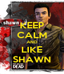 KEEP CALM AND LIKE SHAWN - Personalised Poster A4 size