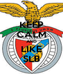 KEEP CALM AND LIKE SLB - Personalised Poster A4 size
