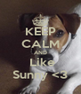 KEEP CALM AND  Like Sunny <3 - Personalised Poster A4 size