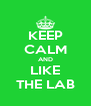 KEEP CALM AND LIKE THE LAB - Personalised Poster A4 size