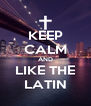 KEEP CALM AND LIKE THE LATIN - Personalised Poster A4 size