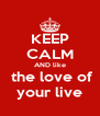 KEEP CALM AND like  the love of your live - Personalised Poster A4 size