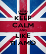 KEEP CALM AND LIKE TI AMO - Personalised Poster A4 size