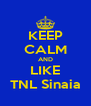 KEEP CALM AND LIKE TNL Sinaia - Personalised Poster A4 size