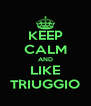 KEEP CALM AND LIKE TRIUGGIO - Personalised Poster A4 size