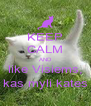 KEEP CALM AND like Visiems, kas myli kates - Personalised Poster A4 size