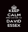 KEEP CALM AND LISTEN TO DAVID ESSEX - Personalised Poster A4 size