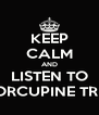 KEEP CALM AND LISTEN TO PORCUPINE TREE - Personalised Poster A4 size