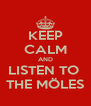 KEEP CALM AND LISTEN TO  THE MÖLES - Personalised Poster A4 size