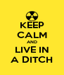 KEEP CALM AND LIVE IN A DITCH - Personalised Poster A4 size