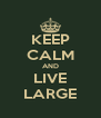 KEEP CALM AND LIVE LARGE - Personalised Poster A4 size