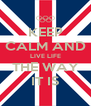 KEEP CALM AND LIVE LIFE THE WAY IT IS - Personalised Poster A4 size