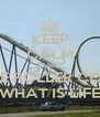 KEEP CALM AND LIVE THE ROLLER COASTER  WHAT IS LIFE - Personalised Poster A4 size