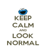 KEEP CALM AND LOOK NORMAL - Personalised Poster A4 size