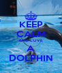 KEEP CALM AND LOVE A DOLPHIN - Personalised Poster A4 size