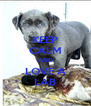 KEEP CALM AND LOVE A LAB - Personalised Poster A4 size