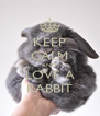 KEEP CALM AND LOVE A RABBIT - Personalised Poster A4 size