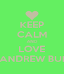 KEEP CALM AND LOVE ANDREW BUI - Personalised Poster A4 size