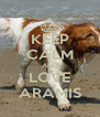 KEEP CALM AND LOVE ARAMIS - Personalised Poster A4 size