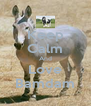 Keep Calm And Love Bamdam - Personalised Poster A4 size