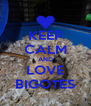 KEEP CALM AND LOVE BIGOTES - Personalised Poster A4 size