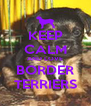 KEEP CALM AND LOVE BORDER TERRIERS - Personalised Poster A4 size