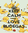 KEEP CALM AND LOVE BUDEGAS - Personalised Poster A4 size