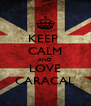 KEEP  CALM AND LOVE CARACAL - Personalised Poster A4 size