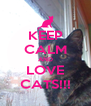 KEEP CALM AND LOVE CATS!!! - Personalised Poster A4 size