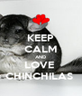 KEEP CALM AND LOVE  CHINCHILAS  - Personalised Poster A4 size