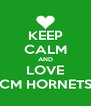 KEEP CALM AND LOVE CM HORNETS - Personalised Poster A4 size