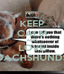KEEP CALM AND LOVE DACHSHUNDS - Personalised Poster A4 size