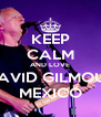 KEEP CALM AND LOVE DAVID GILMOUR MEXICO - Personalised Poster A4 size