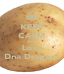KEEP CALM AND Love Dna Dragnea - Personalised Poster A4 size