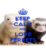 KEEP CALM AND LOVE FERRETS - Personalised Poster A4 size
