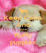 Keep Calm And Love fluffy puppies - Personalised Poster A4 size