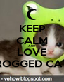 KEEP CALM AND LOVE FROGGED CATS - Personalised Poster A4 size
