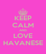 KEEP CALM AND LOVE HAVANESE - Personalised Poster A4 size