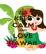 KEEP CALM AND LOVE HAWAII - Personalised Poster A4 size