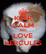 KEEP CALM AND LOVE HERCULES - Personalised Poster A4 size