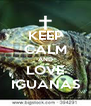 KEEP CALM AND LOVE IGUANAS - Personalised Poster A4 size