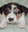 KEEP CALM AND Love  Jack russels - Personalised Poster A4 size