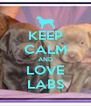 KEEP CALM AND LOVE LABS - Personalised Poster A4 size
