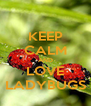 KEEP CALM AND LOVE LADYBUGS - Personalised Poster A4 size