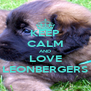 KEEP CALM AND LOVE LEONBERGERS - Personalised Poster A4 size
