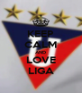 KEEP CALM AND LOVE LIGA - Personalised Poster A4 size