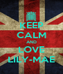 KEEP CALM AND LOVE LILY-MAE - Personalised Poster A4 size