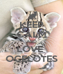 KEEP CALM AND LOVE  OCELOTES - Personalised Poster A4 size