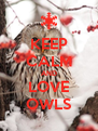 KEEP CALM AND LOVE OWLS - Personalised Poster A4 size